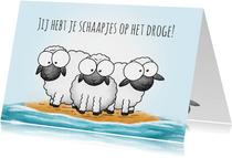 Felicitatie schapen jij hebt je schaapjes op het droge!