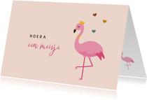 Felicitatiekaart geboorte illustratie flamingo