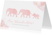 Felicitatiekaart kleinkind met silhouet van 3 olifantjes