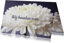 Fotokaart met een witte bloem en de tekst 'We houden van ...