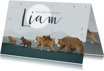 Geboortekaartje broertje dieren beren familie sterren maan