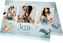 Geboortekaartje fotocollage jongetje met vissen en walvis