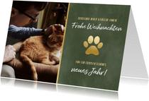 Geschäftliche Weihnachtskarte für Tierklinik oder Tierarzt