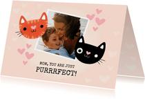 Grappige moederdag kaart katten mom you are just purrrfect!