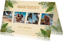 Hippe vakantiekaart fotocollage junglebladeren vakantiegroet