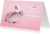It's some bunny's birthday verjaardagskaart