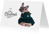 Kerstkaart - Franse Bulldog Kerstboom trui