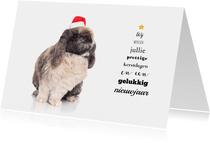 Kerstkaart - Konijn met kerstmuts en kerstboom tekst