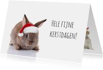 Kerstkaart konijn met kerstmuts