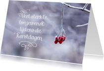Condoleancekaarten - Kerstkaart sterkte