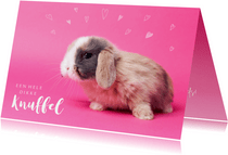 Kinderkaart - Knuffel konijntje roze