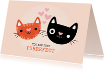 "Liefde kaart met katten ""You are just purrfect"""