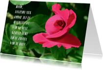 Liefde kaarten - Liefde kaart rode roos 2