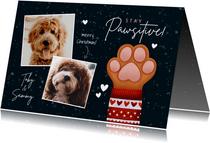 Lieve kerstkaart Stay Pawsitive hondenpootje en foto's