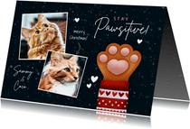 Lieve kerstkaart Stay Pawsitive, kattenpootje en foto's