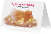 Moederdagkaart met  kip en kuikentjes - Chiwowy