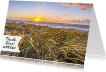 Postkarte von Texel mit Dünengras