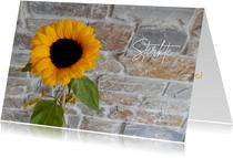 Sterkte zonnebloem natuursteen