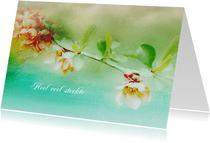 Sterktekaart bloesem lente kleuren