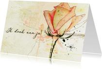 Sterktekaart roos zacht zalmkleur