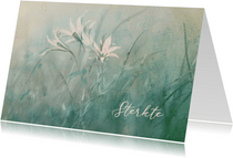 Sterktekaart vintage filter veldbloemen