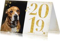 Stijlvolle nieuwjaarskaart met gouden 2019, sterren en foto