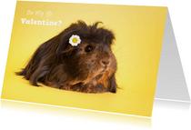 Valentijnskaart met cavia en madeliefje