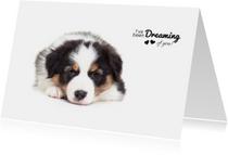 Valentijnskaart - Puppy - Dreaming of you!