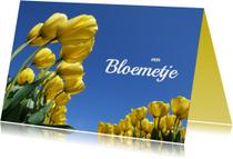 Verjaardagskaart Gele tulpen OT