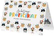 Verjaardagskaart grappig katten poezen confetti proficikat