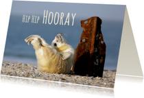 Verjaardagskaart met blije jonge zeehond