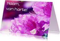 Verjaardagskaart roze rhododendron