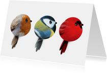 Vogeltjes piep