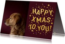 Weihnachtskarte elegantes rot mit Foto und Sternen