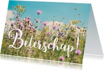 Wildbloemen - Beterschap