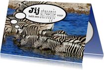 Zebra 2 - Streepje Voor - OT