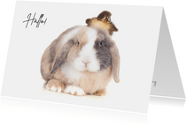 Zomaar kaart - Hallo! Schattig konijn met kuikentje op hoofd