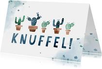 Zomaar kaart knuffel met cactussen