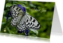 Zomaar voor jou met vlinder