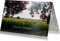 zonnig Frankrijk