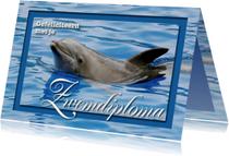 Zwemdiploma 1 - Dolfijn - OT