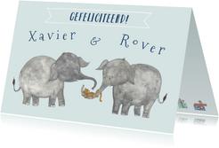 Felicitatie tweeling olifanten