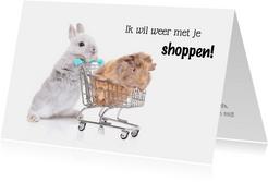 Zomaar kaart konijn en cavia in winkelwagen