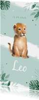 Dankeskarte Geburt kleiner Löwe Foto Rückseite