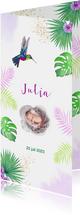 Geboorte meisje kolibrie tropisch