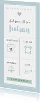 Geboortekaart langwerpig pictogrammen blauw - BC