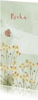 Geboortekaart met pastelkleurige bloemen en vlinder