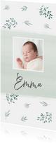 Geboortekaarte langwerpig mint takjes