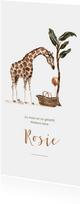 Geboortekaartje giraf met baby mand en ballon