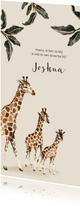 Geboortekaartje giraffen voor een tweede kindje